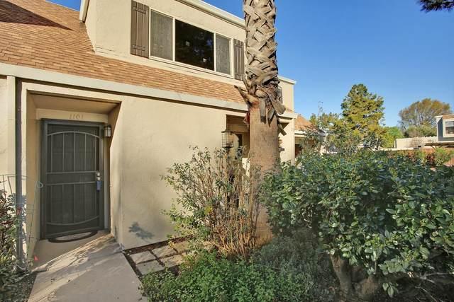 1101 Weepinggate Ln, San Jose, CA 95136 (#ML81783173) :: The Goss Real Estate Group, Keller Williams Bay Area Estates