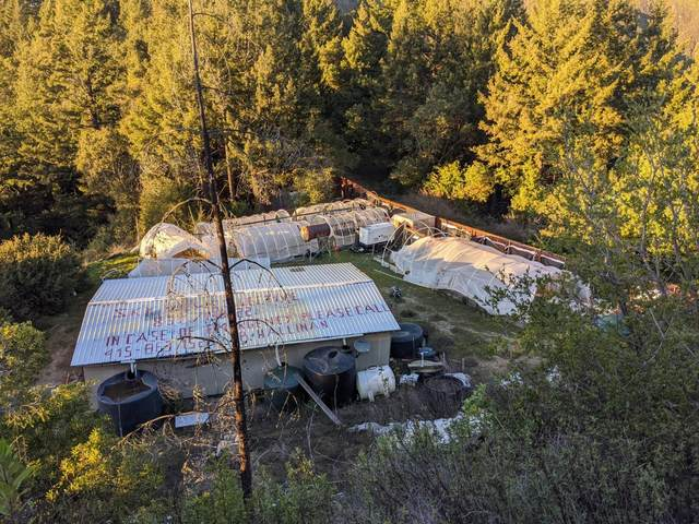 0 Skyview Rd, Boulder Creek, CA 95006 (#ML81783497) :: The Kulda Real Estate Group