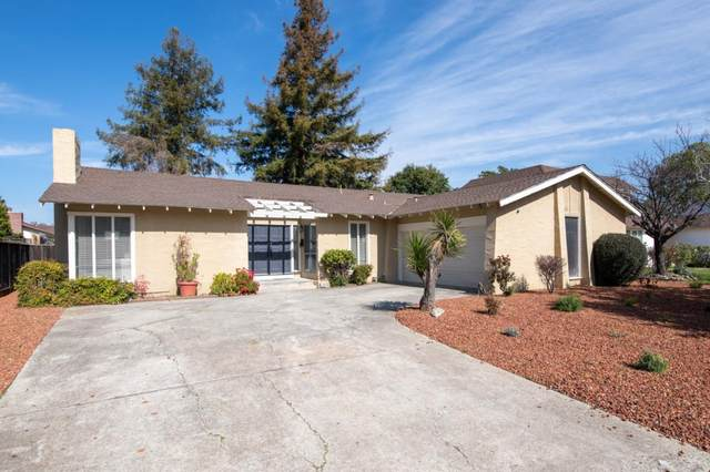 317 Los Pinos Way, San Jose, CA 95119 (#ML81783819) :: Keller Williams - The Rose Group