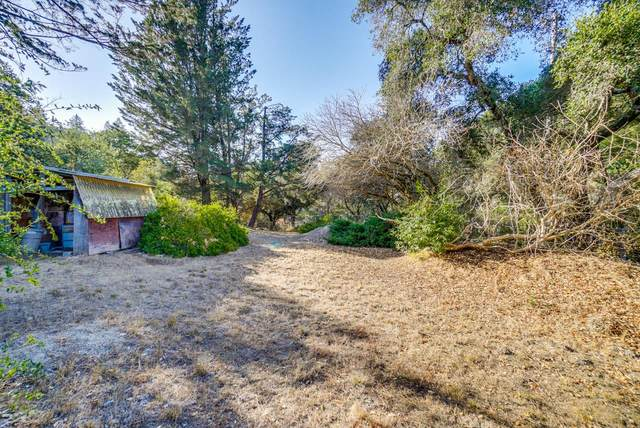 28 Sunridge Dr, Scotts Valley, CA 95066 (#ML81783831) :: Keller Williams - The Rose Group