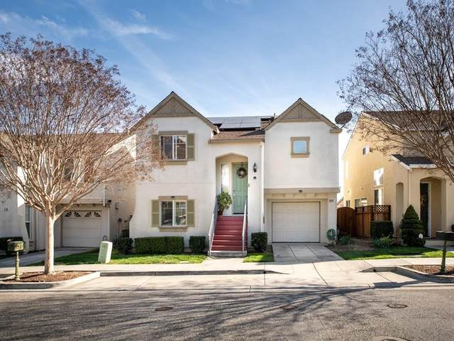 564 Chelsea Xing, San Jose, CA 95138 (#ML81783997) :: Keller Williams - The Rose Group