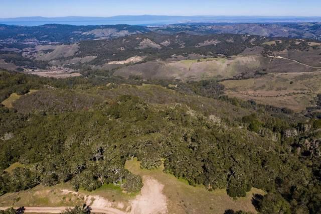 13 Cantera Run, Carmel Valley, CA 93923 (#ML81784070) :: The Gilmartin Group