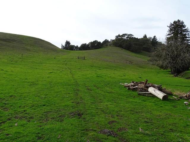 0 Muir Drive, Soquel, CA 95073 (#ML81784261) :: Strock Real Estate