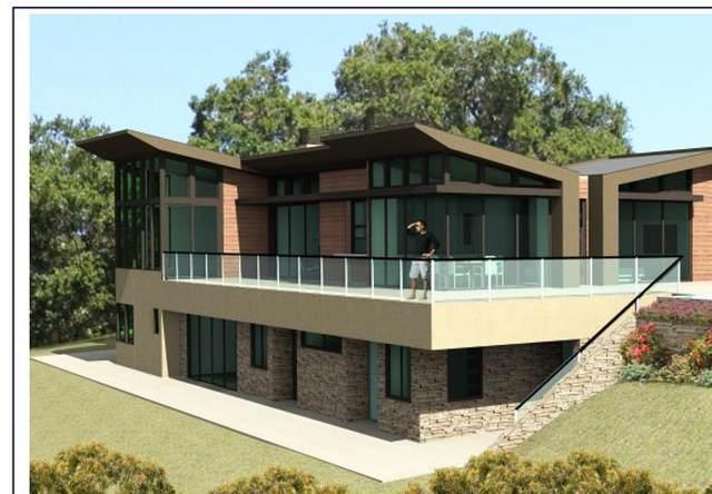 14190 Palomino Way, Saratoga, CA 95070 (#ML81784454) :: Real Estate Experts