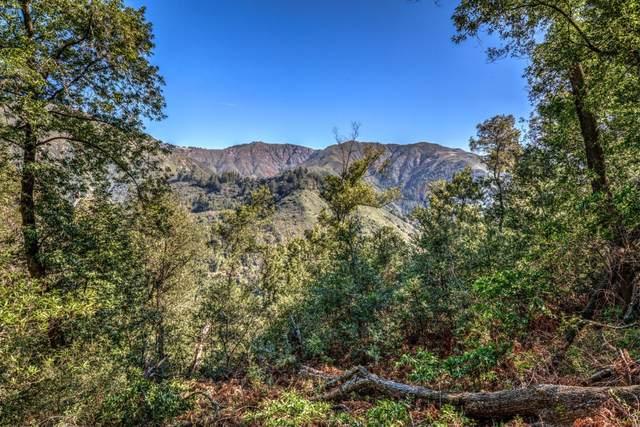 46151 Clear Ridge Rd, Big Sur, CA 93920 (#ML81784968) :: Alex Brant Properties