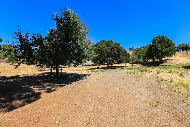 12815 Deer Creek Ln, Los Altos Hills, CA 94022 (#ML81785136) :: Intero Real Estate