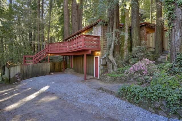110 Bobcat Ln, Boulder Creek, CA 95006 (#ML81785249) :: The Goss Real Estate Group, Keller Williams Bay Area Estates