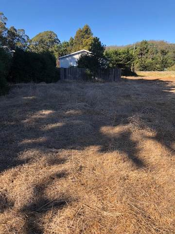 0 Mirada Road, Half Moon Bay, CA 94019 (#ML81785554) :: The Gilmartin Group