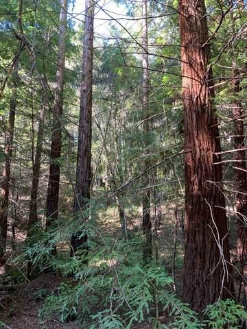 0 Blair, Boulder Creek, CA 95006 (#ML81785567) :: The Goss Real Estate Group, Keller Williams Bay Area Estates