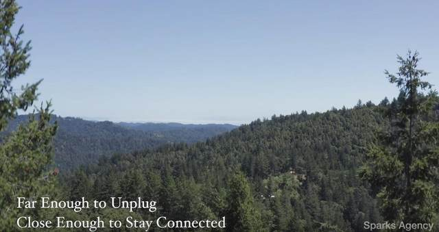 215 Skyview Rd, Boulder Creek, CA 95006 (#ML81786204) :: The Goss Real Estate Group, Keller Williams Bay Area Estates