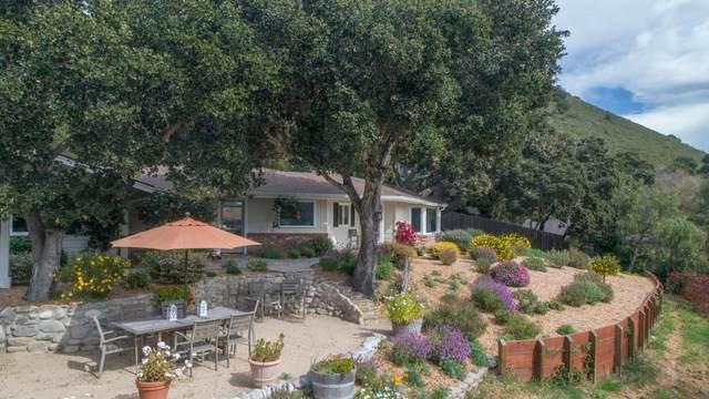 167 El Caminito Rd, Carmel Valley, CA 93924 (#ML81786408) :: Alex Brant Properties
