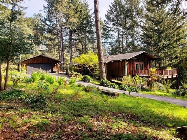 99 Stadler Dr, Woodside, CA 94062 (#ML81787449) :: The Kulda Real Estate Group