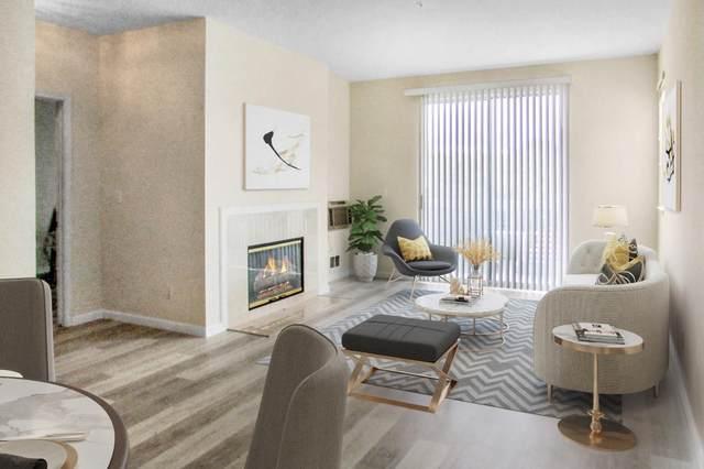 250 Santa Fe Ter 218, Sunnyvale, CA 94085 (#ML81787511) :: Intero Real Estate