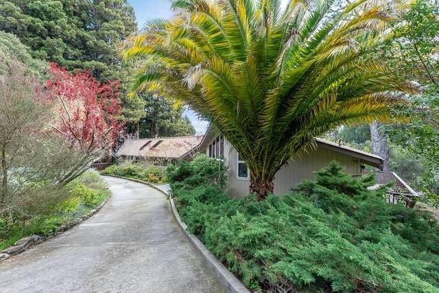 65 Roan Pl, Woodside, CA 94062 (#ML81787761) :: The Kulda Real Estate Group