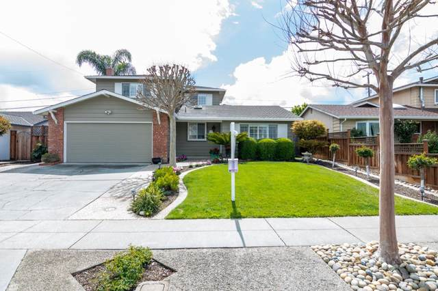 930 Springfield Dr, Campbell, CA 95009 (#ML81787864) :: Live Play Silicon Valley