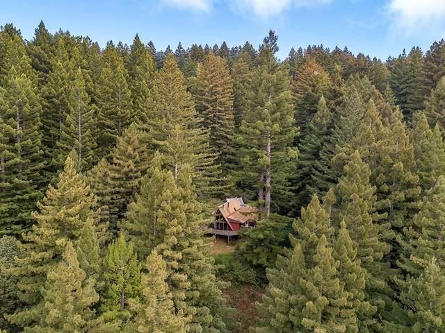 157 Henrik Ibsen Park Rd, Woodside, CA 94062 (#ML81788254) :: The Kulda Real Estate Group
