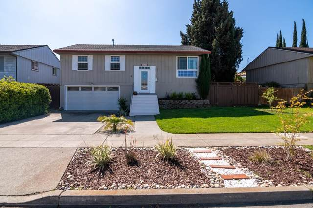 1608 Hallbrook Dr, San Jose, CA 95124 (#ML81788345) :: Real Estate Experts