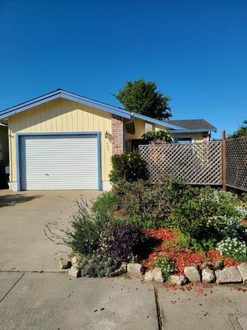 486 Joyce Dr, Watsonville, CA 95076 (#ML81788347) :: RE/MAX Real Estate Services