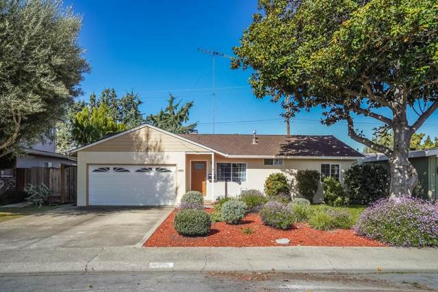 1455 Norman Ave, San Jose, CA 95125 (#ML81788487) :: Real Estate Experts