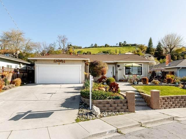 14880 Mcvay Ave, San Jose, CA 95127 (#ML81788539) :: Real Estate Experts
