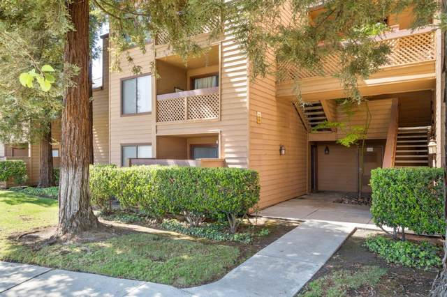 754 Teatree Ct, San Jose, CA 95128 (#ML81788678) :: Live Play Silicon Valley