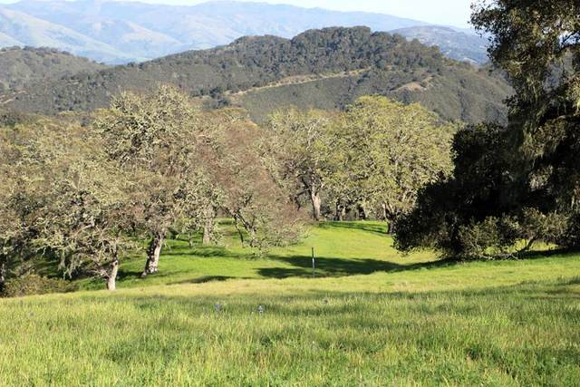 5 Black Mountain Trl, Carmel, CA 93923 (#ML81788719) :: The Gilmartin Group