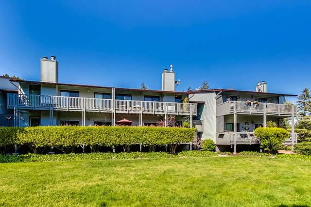 4172 George Ave 4, San Mateo, CA 94403 (#ML81788782) :: Real Estate Experts
