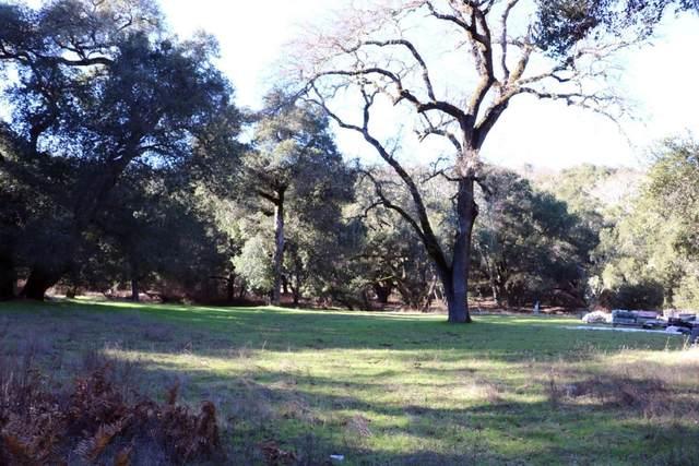 34180 Robinson Canyon Rd, Carmel, CA 93923 (#ML81789057) :: The Gilmartin Group