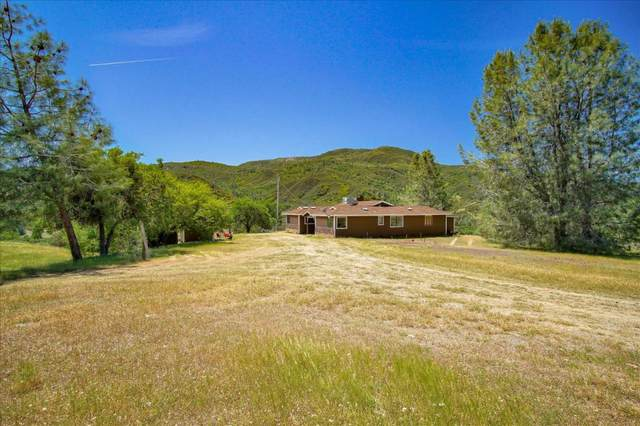 0 Hernandez Rd., Paicines, CA 95043 (#ML81791860) :: The Gilmartin Group