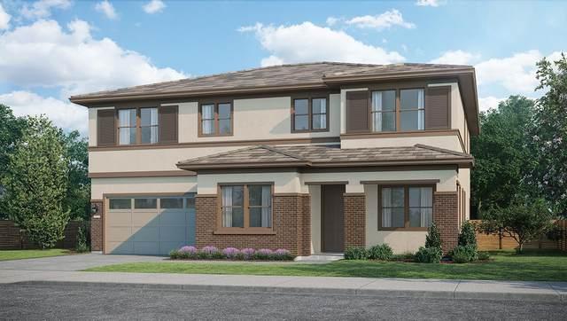 6557 Purple Crab Dr, Newark, CA 94560 (#ML81793304) :: Intero Real Estate