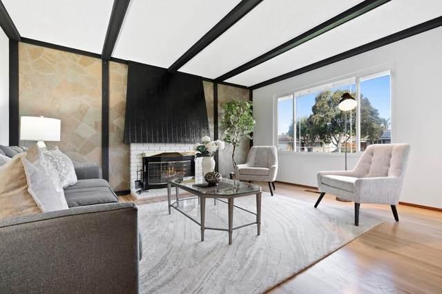 5894 Paddon Cir, San Jose, CA 95123 (#ML81793681) :: The Goss Real Estate Group, Keller Williams Bay Area Estates