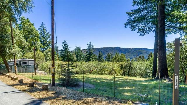 21643 Woolaroc Dr, Los Gatos, CA 95033 (#ML81794052) :: Alex Brant Properties