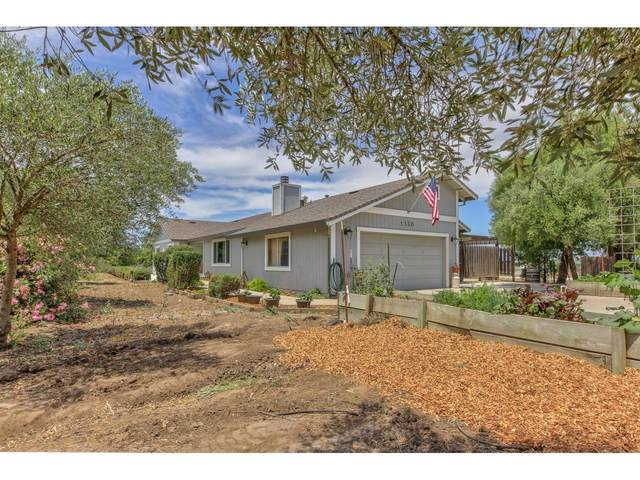 1150 Wright Rd, Hollister, CA 95023 (#ML81794064) :: Strock Real Estate