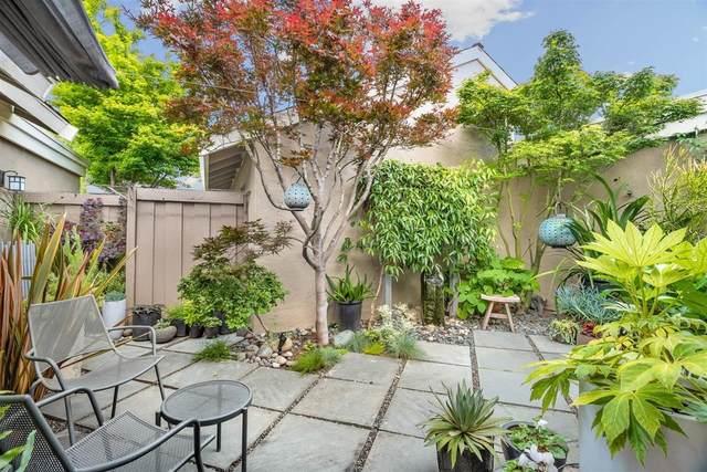 223 Escobar Ave, Los Gatos, CA 95032 (#ML81794192) :: The Goss Real Estate Group, Keller Williams Bay Area Estates