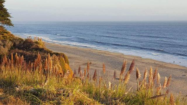 20 Seascape Resort Dr 20, Aptos, CA 95003 (#ML81794274) :: Schneider Estates