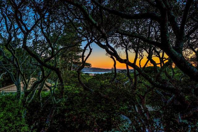 0 Fraser Way 2 Ne Of Camino Real, Carmel, CA 93923 (#ML81794522) :: The Goss Real Estate Group, Keller Williams Bay Area Estates