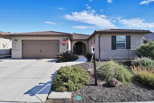 1041 Brigantino Dr, Hollister, CA 95023 (#ML81794806) :: Strock Real Estate