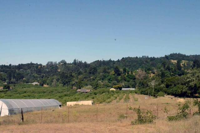 294 Browns Valley Rd, Watsonville, CA 95076 (#ML81794878) :: RE/MAX Real Estate Services