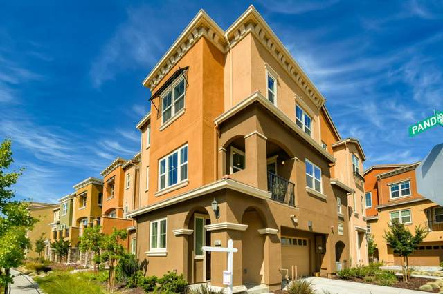 38902 Primula Ter, Newark, CA 94560 (#ML81794931) :: Strock Real Estate