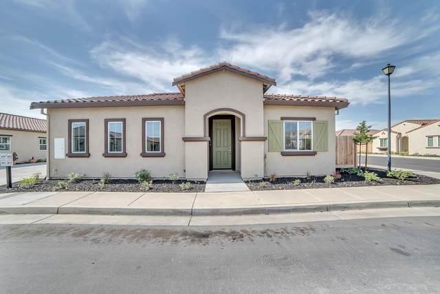 871 Fritz Dr, Los Banos, CA 93635 (#ML81795266) :: The Sean Cooper Real Estate Group