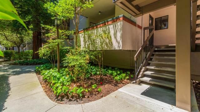 708 San Conrado Ter 2, Sunnyvale, CA 94085 (#ML81795419) :: RE/MAX Real Estate Services