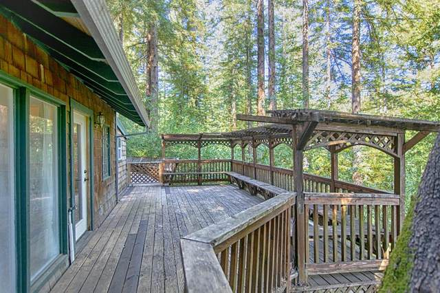 398 Shadow Mountain Rd, Boulder Creek, CA 95006 (#ML81795764) :: The Goss Real Estate Group, Keller Williams Bay Area Estates