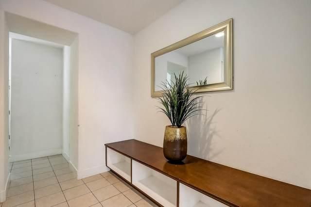 531 Odyssey Ln, Milpitas, CA 95035 (#ML81796169) :: Intero Real Estate
