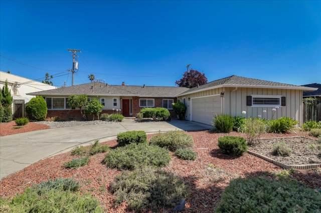 1126 Denise Way, San Jose, CA 95125 (#ML81796228) :: The Sean Cooper Real Estate Group