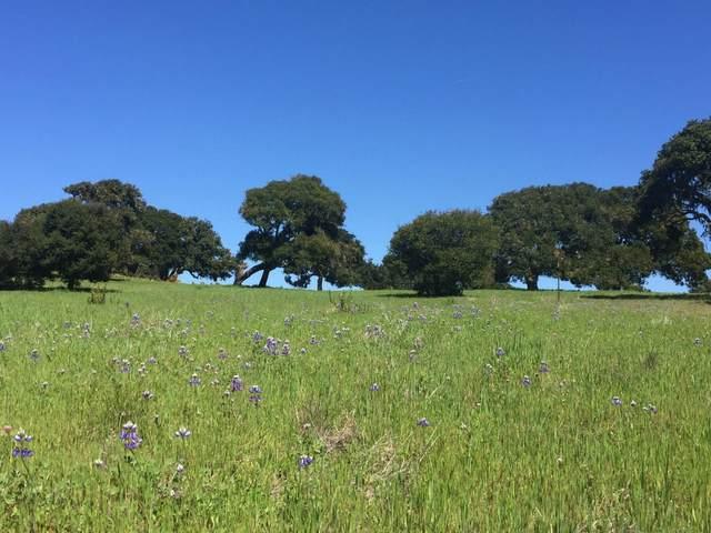 8315 Vista Monterra, Monterey, CA 93940 (#ML81797216) :: Strock Real Estate
