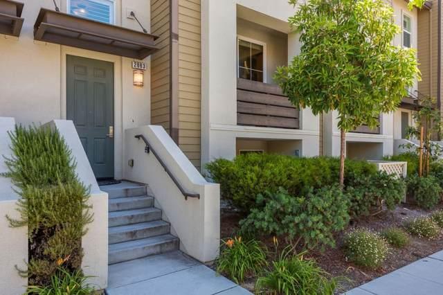 2883 Baze Rd, San Mateo, CA 94403 (#ML81798338) :: Strock Real Estate