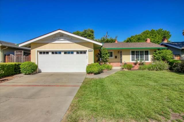 1249 Castlemont Ave, San Jose, CA 95128 (#ML81798552) :: The Realty Society