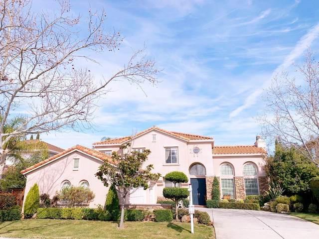 4273 Mackin Woods Ln, San Jose, CA 95135 (#ML81798564) :: Intero Real Estate