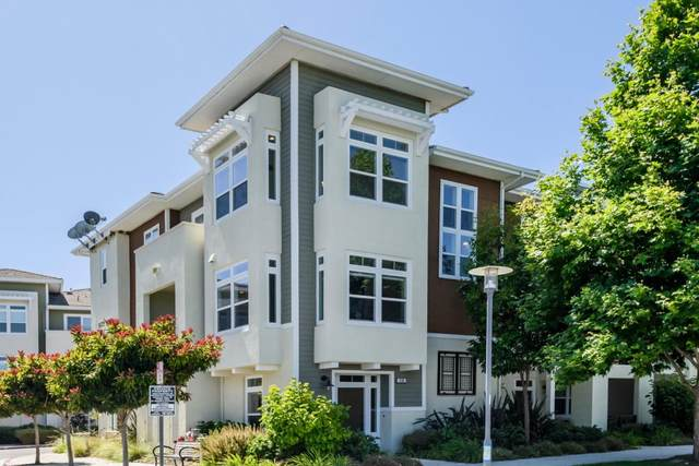 436 E 28th Ave, San Mateo, CA 94403 (#ML81798763) :: Strock Real Estate