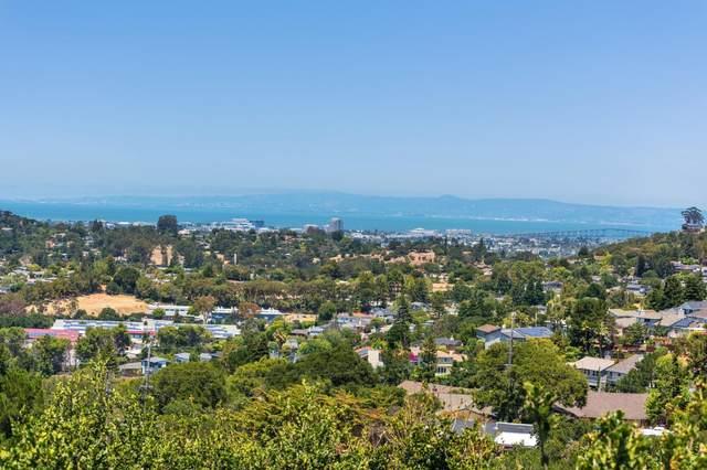 16 Shratton Ave, San Carlos, CA 94070 (#ML81798796) :: Alex Brant Properties